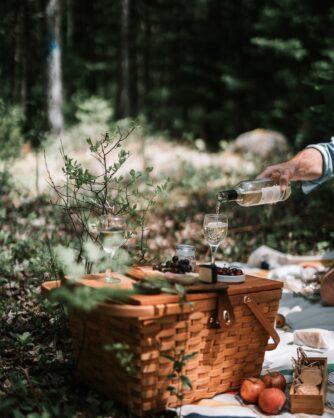 кошница за пикник в гората