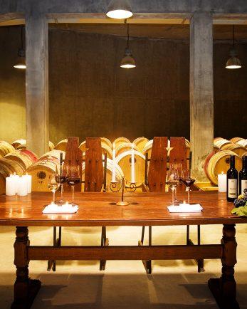 дегустация на вино шато копса