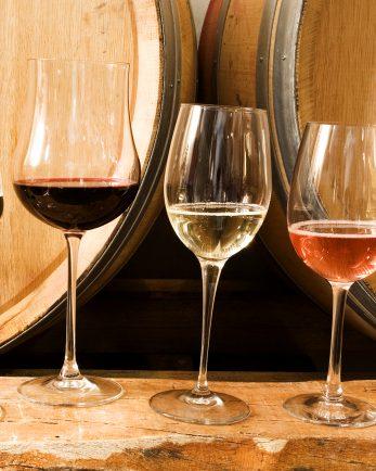 приказния свят на виното