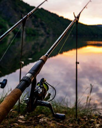 риболов в добринище